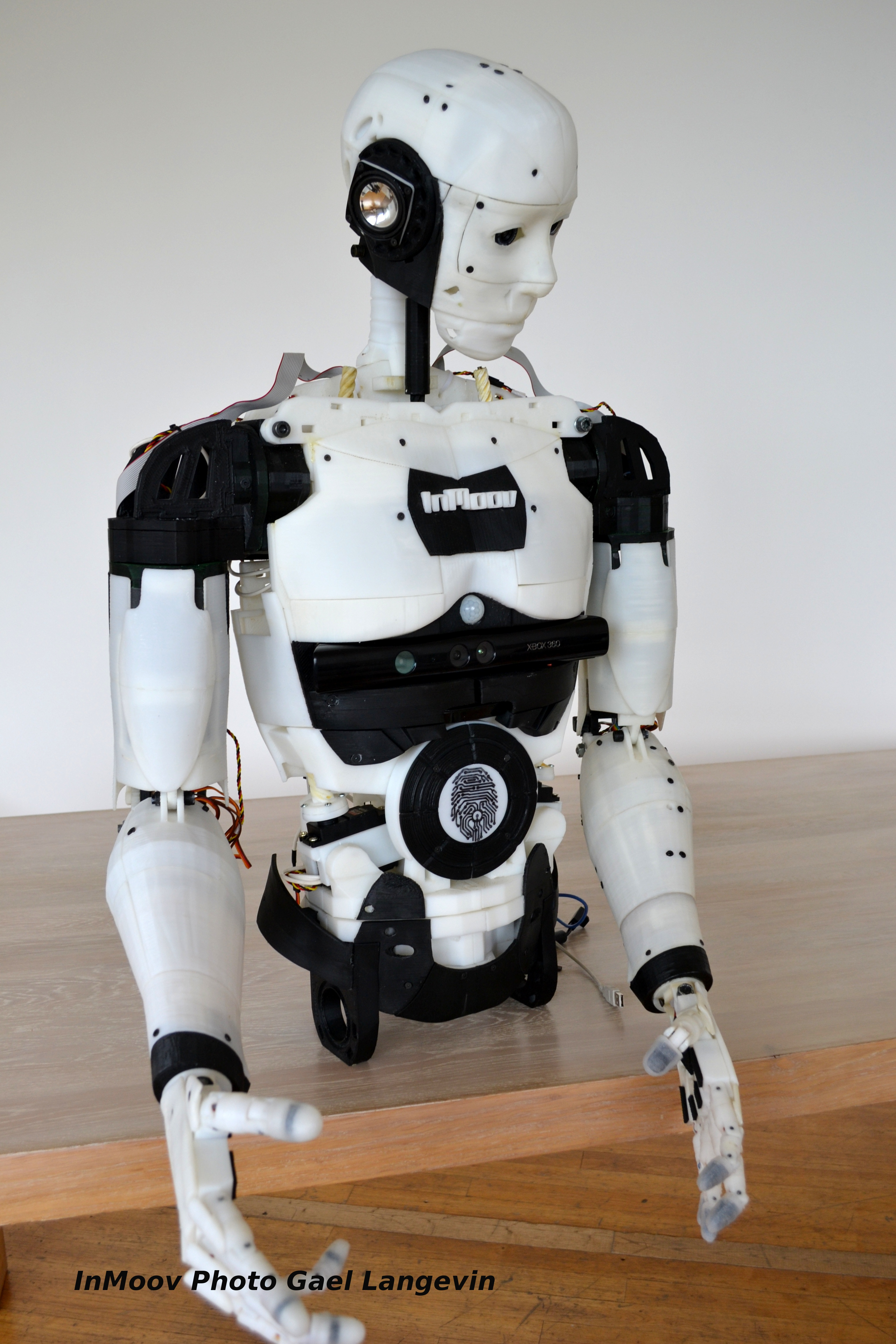 Inmoov at the bal of robot